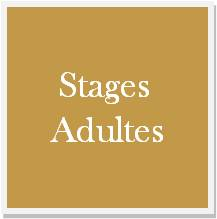 stage cours adultes Marseille Orchestra Studio stage vacances Marseille