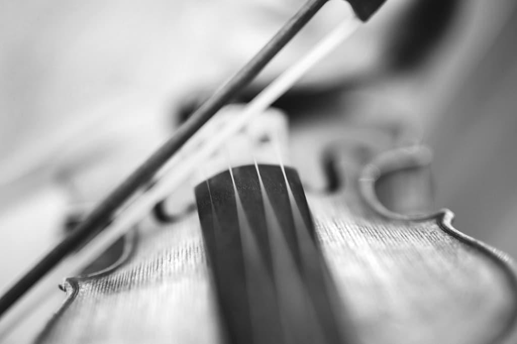 cours de violon adultes